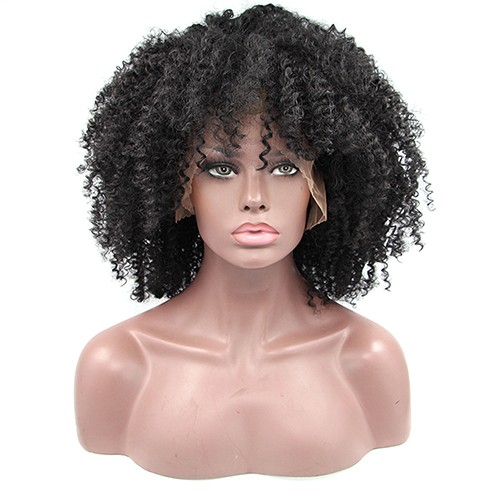 Synthetic Lace Front Hair Wig PWS243 Curly