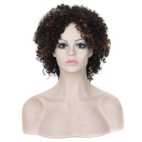 Synthetic Capless Hair Wig PWS254 Curly