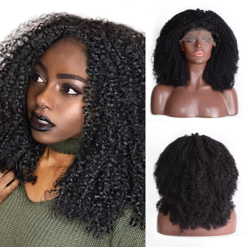 Lace Front Synthetic Hair Wig PWS493 Kinky Curly