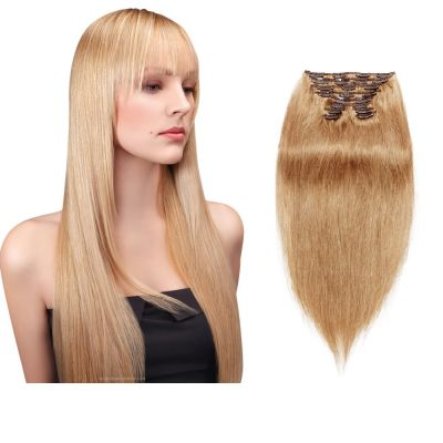 200g 22 Inch #27 Strawberry Blonde Straight Clip In Hair